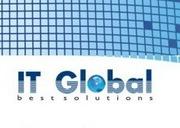 Vinzarea componentelor hardware,  notebooks,  netbooks,  nettops,  software,  echipamente pentru retele.