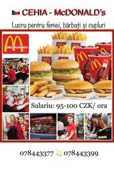 McDonalds Praga,  Mlada Boleslav,  Karlovy Vary,  Plzen 800-1000euro