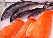 Muncitori la Fabrica de pește roșu