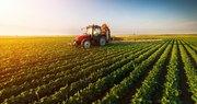 Angajăm Personal necalificat în domeniul AGRICULTURII